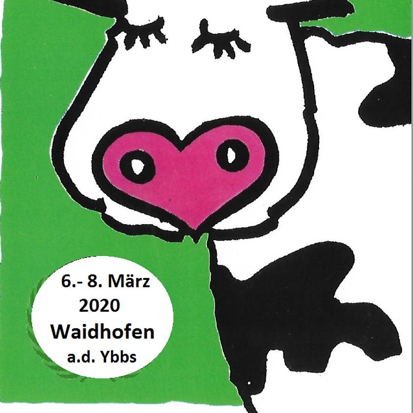Tagung Weyer/Waidhofen