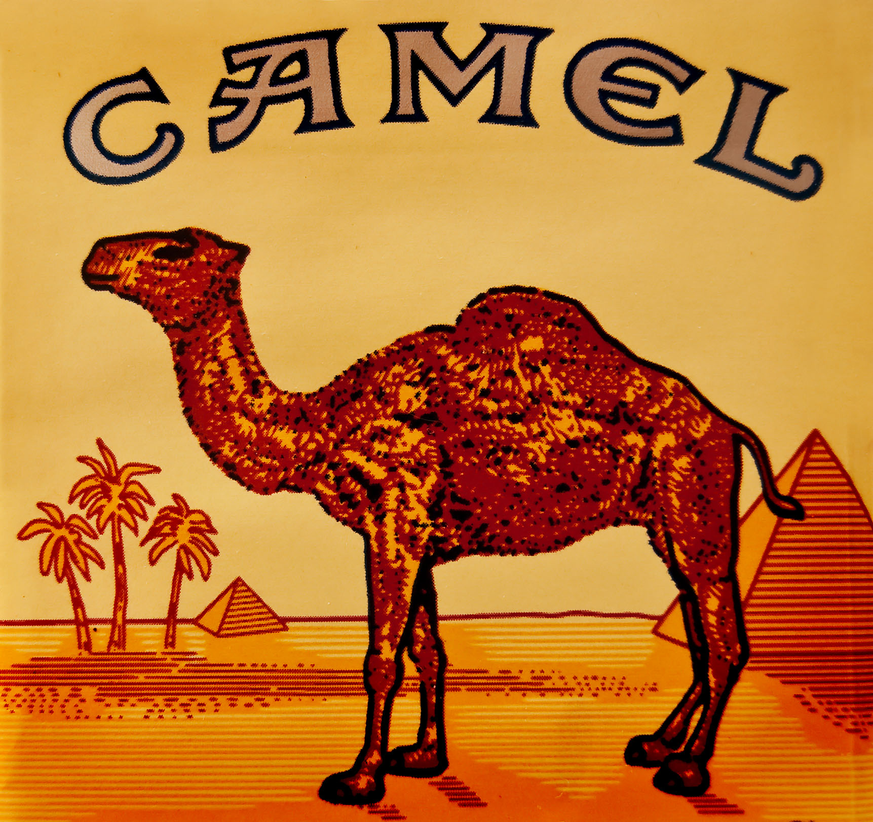 camel-cigarette.jpg