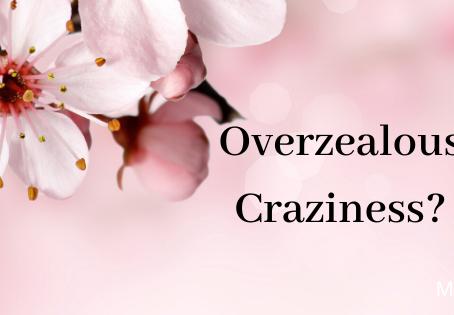 Overzealous Craziness?