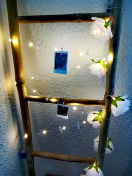 LED lanko s kolíčky.jpg