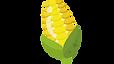 玉米.png