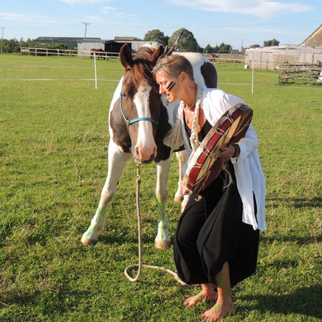 The Sacred Art of the Horse Dance