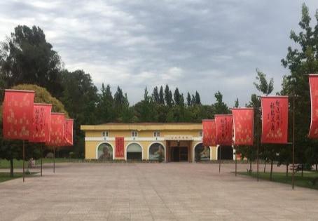 La acción incansable de Foguangshan en Chile