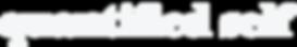 quantified self logo-09.png