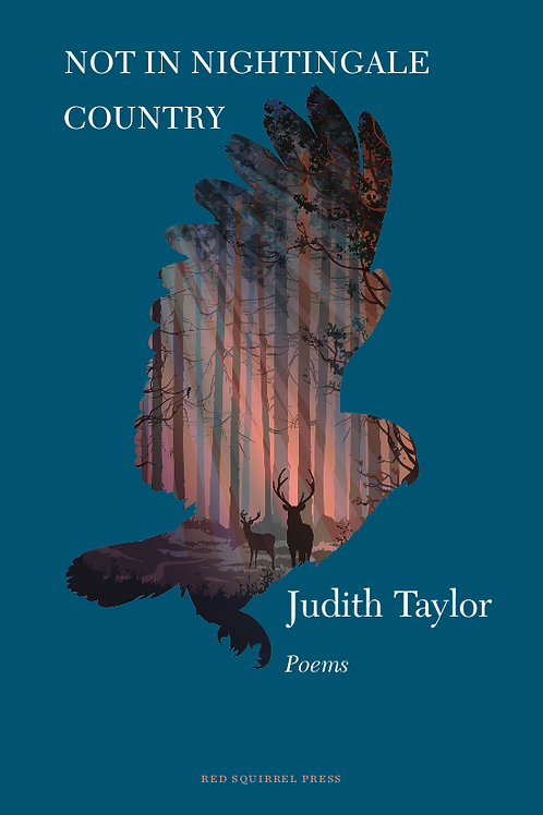 Not In Nightingale Country | Judith Taylor