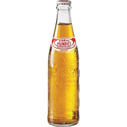 Sidral Mundet - Apple Flavoured Soft Drink