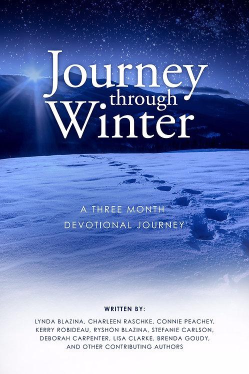 Journey Through Winter