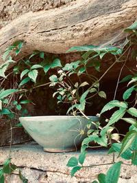 Celadon Thrown Bowl
