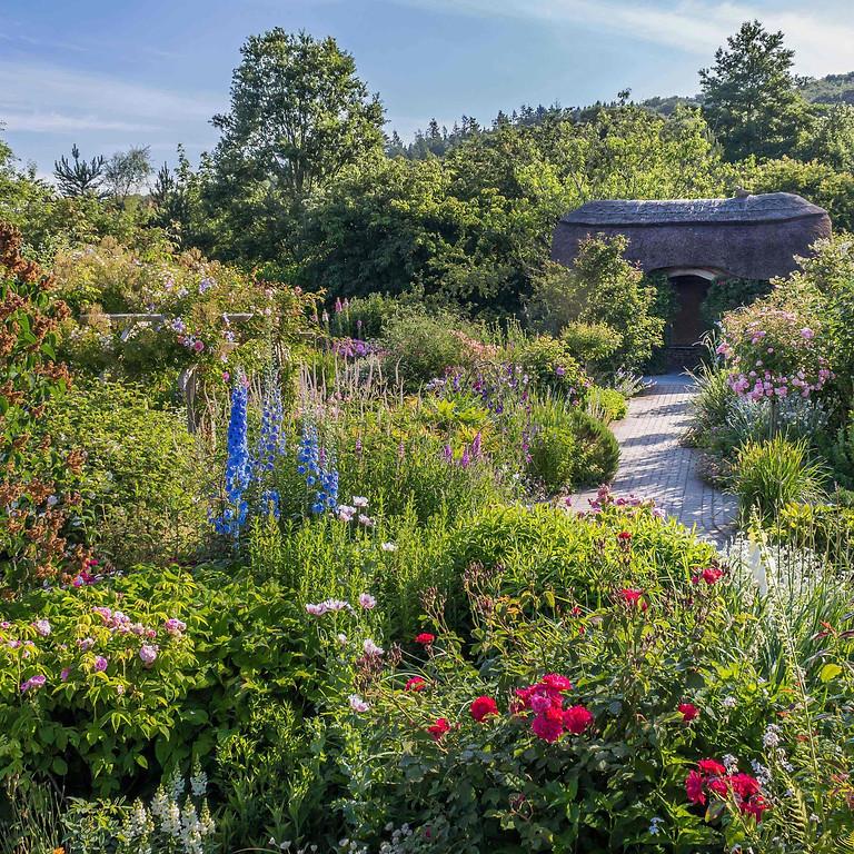 Design for Living Fair Rosemoor