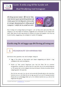 Guide - Instagram-2.png