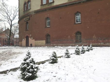 """Калининградский """"Казачий сквер"""" зимой."""