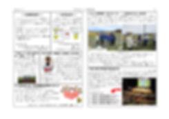 広報 裏6月99号 _page-0001.jpg