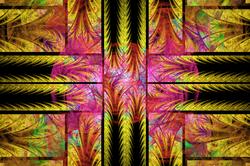 Epispiral Ferns