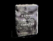 Sarah Stone HGT 3d book.png