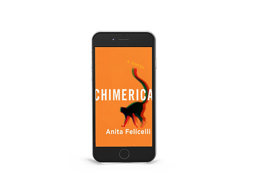 Chimerica: A Novel, Ebook