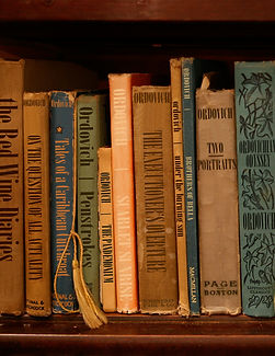 Ordovich, Book Shelf, Literature, Art