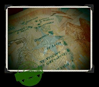 Electric Mermaid International Ordovich logo stamp emblem West Indies