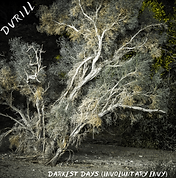 dvrill (4).png