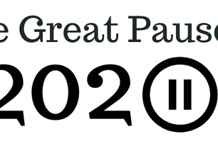 LPS BLOG #5: THE GREAT PAUSE