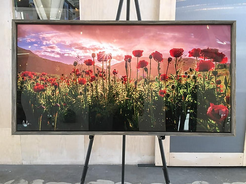 "Mantua Poppies 25""x50"" w/ barnwood frame ""Wildflowers"""