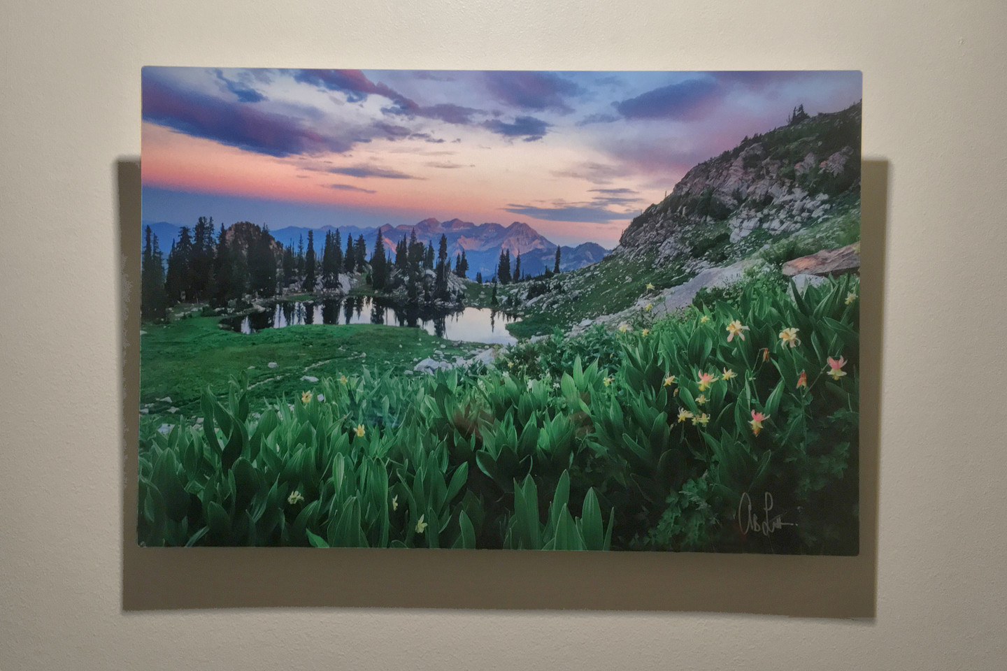 Metal Print Collection (Columbine looking at Mt. Timp)