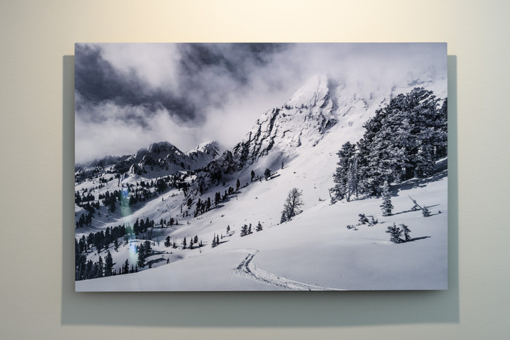 Metal Print Collection (First Tracks)