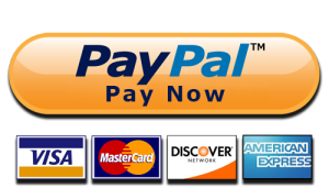 paynow-labor.png