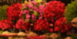 Decoração Casamento - Decoração Casamento Curitiba - Decoração Festa 15 Anos Curitiba - Decoração Festa Infantil Curitiba - Produção Projeto Decoração Eventos Curitiba -  Atelier 16 - Tatiane Amaro | Casamento Alice e Felipe - Taboo