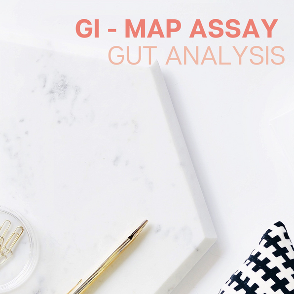 GI Map Assay Gut Analysis