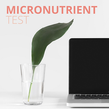 micronutrient test.png