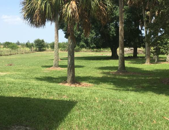 Vero Beach 88 acre farm venue
