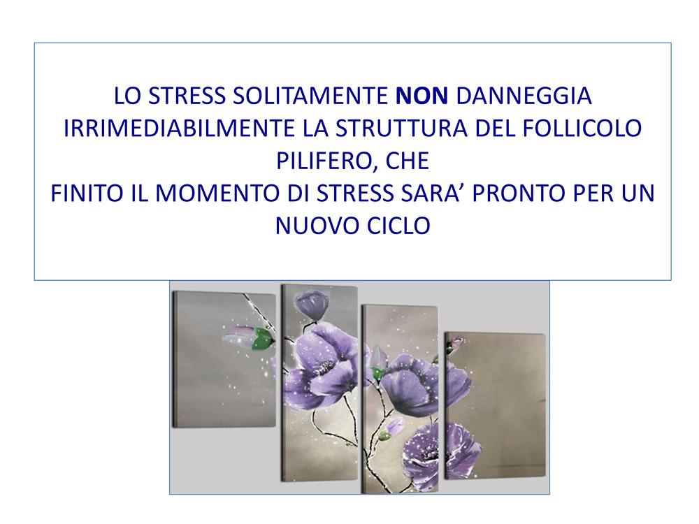 STRESS-CADUTA-STEMCELL-26ottobre2020-21.
