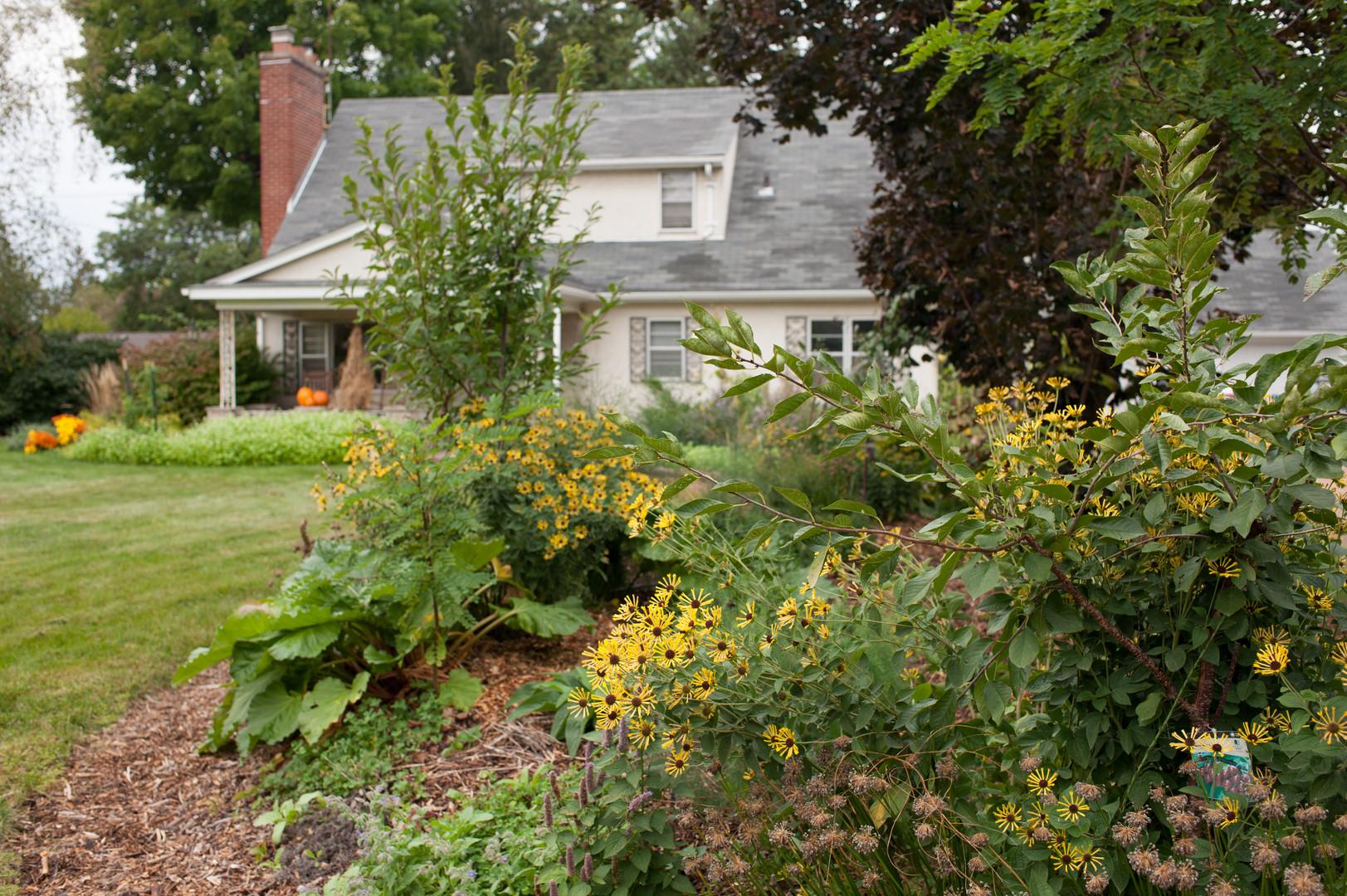 Eco-Friendly, Edible Landscapes