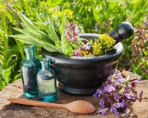 Hierbas medicinales (2).jpg