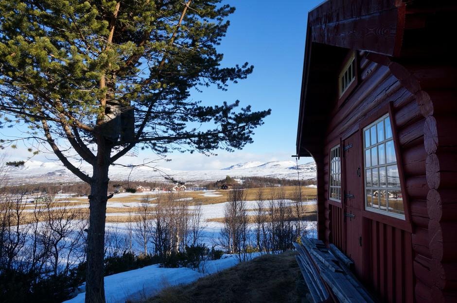 Stopem z Osla do Bergenu