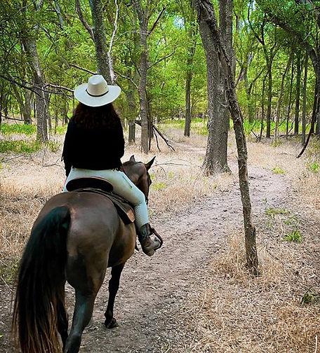 HIGH ON THE HORSE.jpg