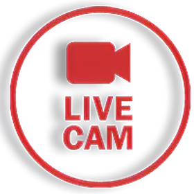 live-cam_edited.png