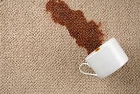 Carpet Spot Treatment (Small)