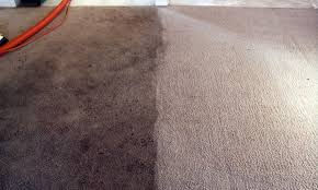 Clean Carpet in any 5 Rooms