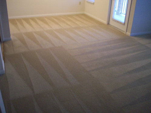 Carpet Cleaning 1 Room $ 33