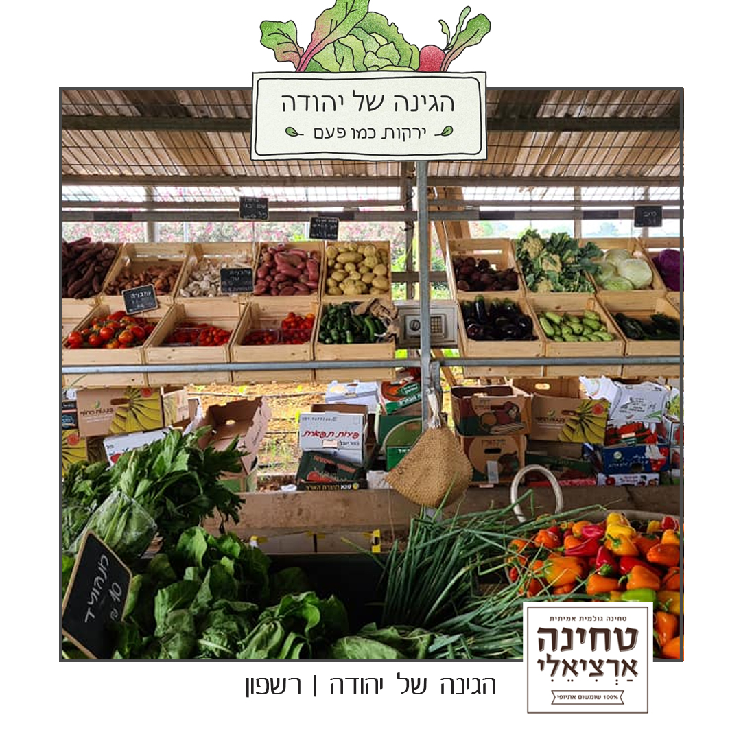 הגינה של יהודה