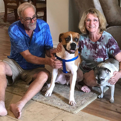 Hank | Adopted 9-18-18