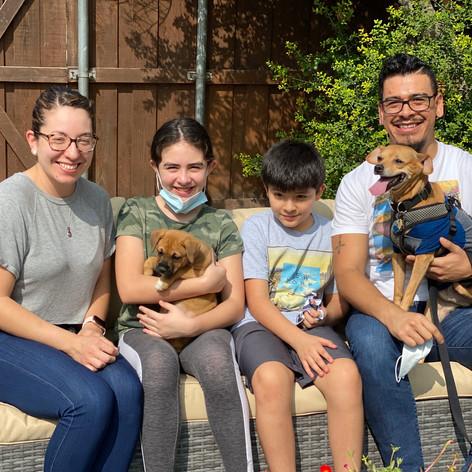 Benatar | Adopted 9-12-20
