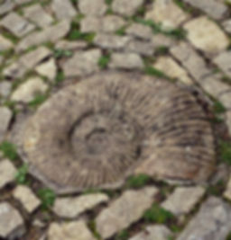 Spiral Glastonbury