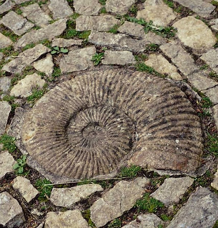Spiral Glastonbury