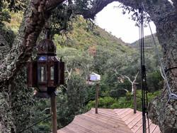 Yurt seen from Treedeck