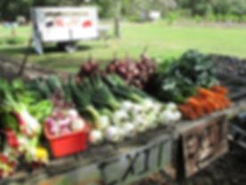 Richard's Farm