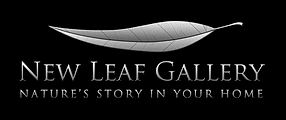 New-leaf-logo2 - Copy.png
