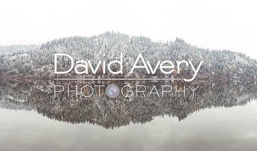 David Avery.jpg