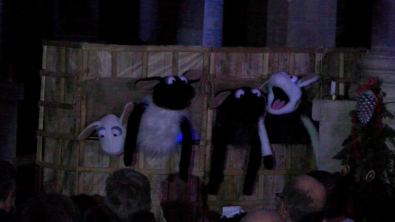 SC2019 Lambs.jpg